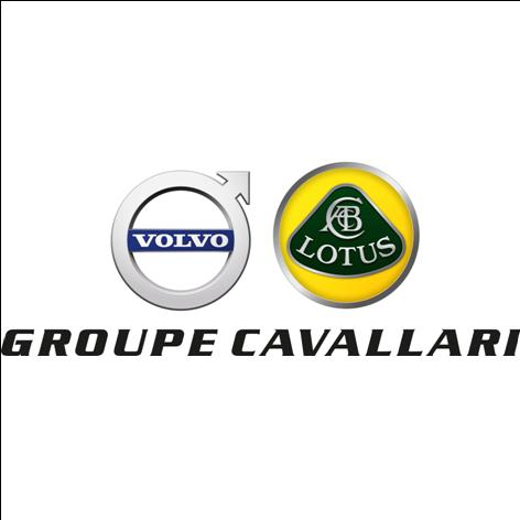 group_cavallari_larg2